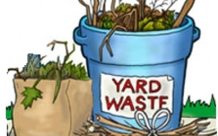 The Next Yard Waste Collection is on Wednesday/Thursday September 13 and 14.